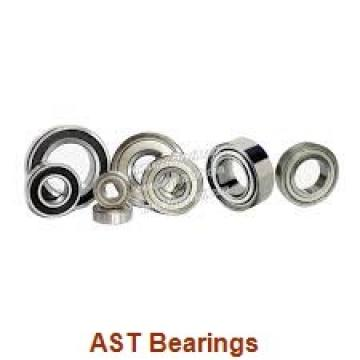 AST GE10C plain bearings